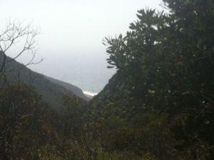 hiking near the beach